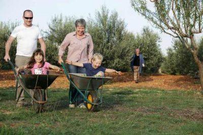 Die Familie Puhar O´Grady in Vodnjan erzeugt einzigartige und prämierte Olivenöle